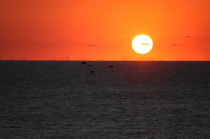 Sonnenaufgang am 17.7.2020 in Sinemorets, Bulgarien (südlichste Küste). Das Leben ist leicht, wenn wir schöne Momente einschätzen können.