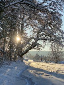 Diessenhofen. Am Feierabend den Schnee geniessen, diesen Winter war es wieder mal möglich.