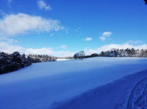 Weitsicht auf dem Randen oberhalb Merishausen bei einer Schlitteltour am 24.1.2021 um 12:52
