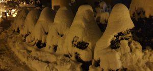 Der Winter muss besonders sein wenn sich sogar die sieben Zwerge nach Buchthalen wagen.