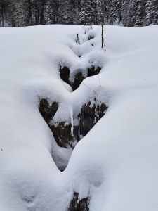 Ein kleines Winter-Wunder. Foto ist aufgenommen, oberhalb Schwanden im Berner Oberland.