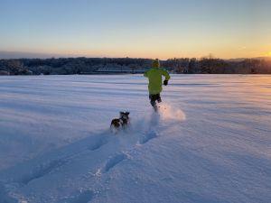 Meine Tochter und unser Hund geniessen den Neuschnee auf dem Feld hinter unserem Haus in Dachsen. Aufgenommen im Januar d.J.
